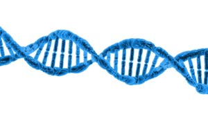 startup_academy_DNA_small